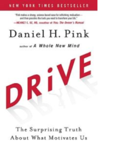 Drive - The truth about what motivates us book cover